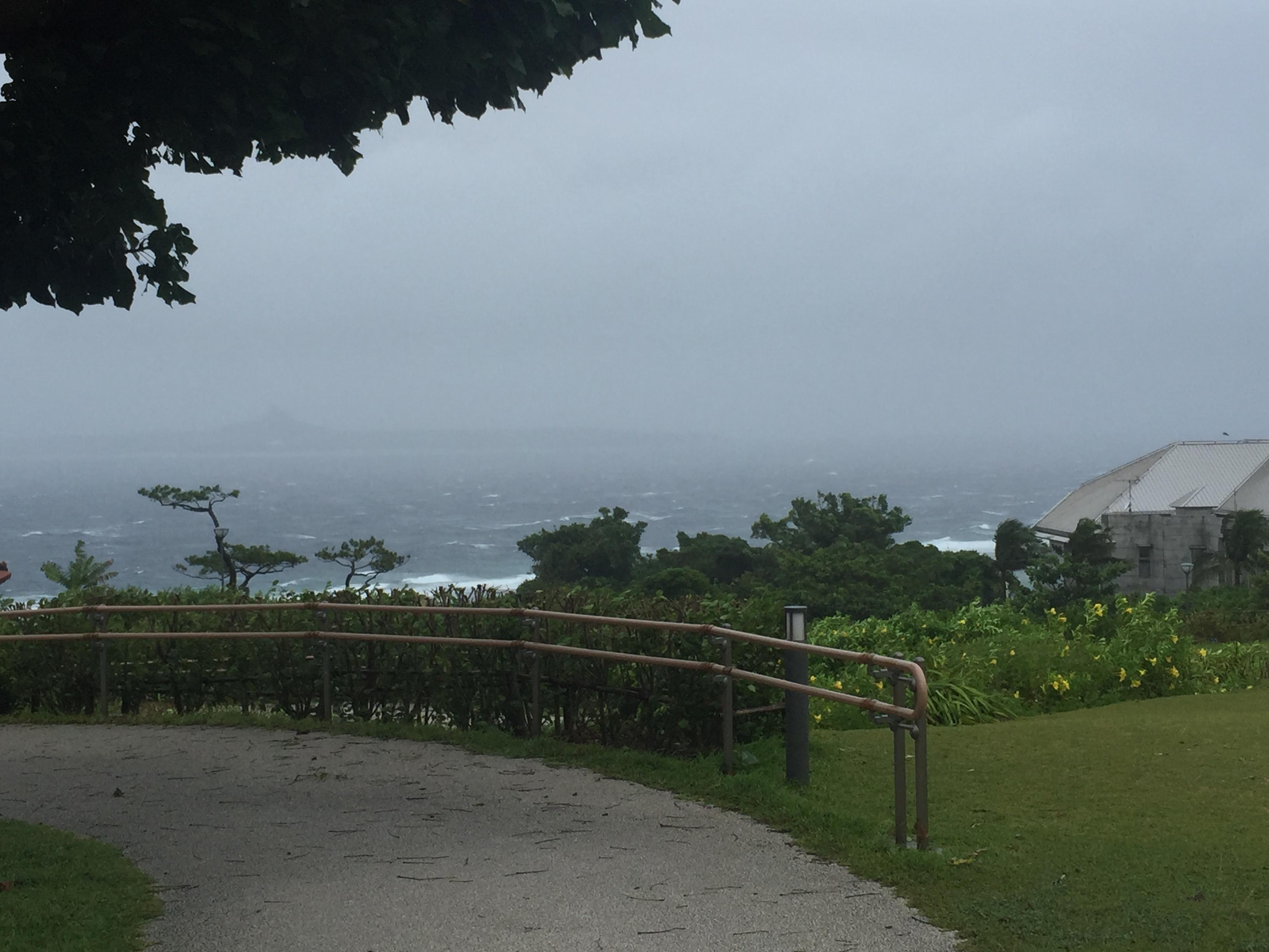 台風の中、沖縄美ら海水族館行ってみた