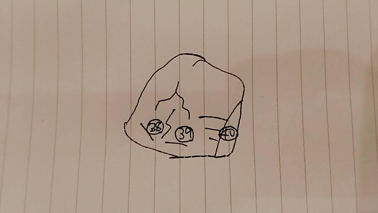 トポに描かれているイラスト