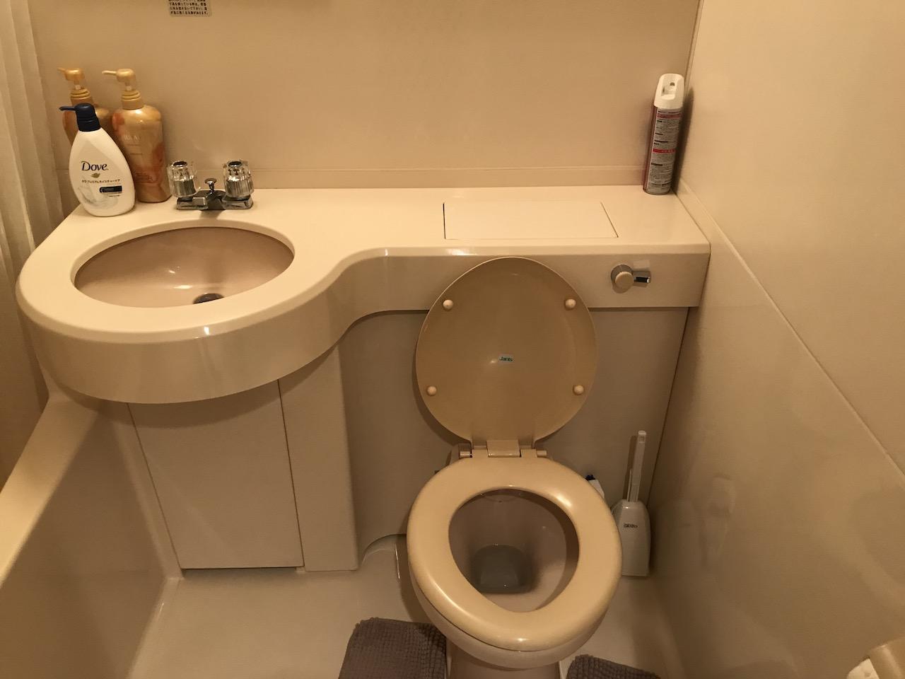 トイレ掃除 アクセス数