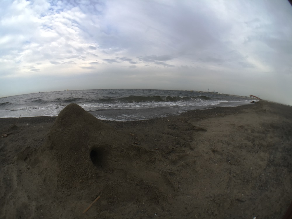 城南島海浜公園 キャンプ